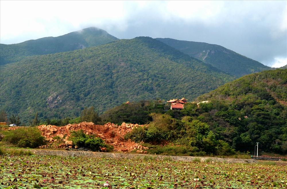 Không chỉ bồi hồi với chuyện đau thương, đến Cao Đảo, du khách sẽ rũ bỏ bui trần khi nghe tiếng chuông chùa Vân Sơn trên đỉnh Núi Một rắc âm thanh lên mặt hồ  An Hải rực sắc sen đua nở. (Ảnh: Thanh Mai)