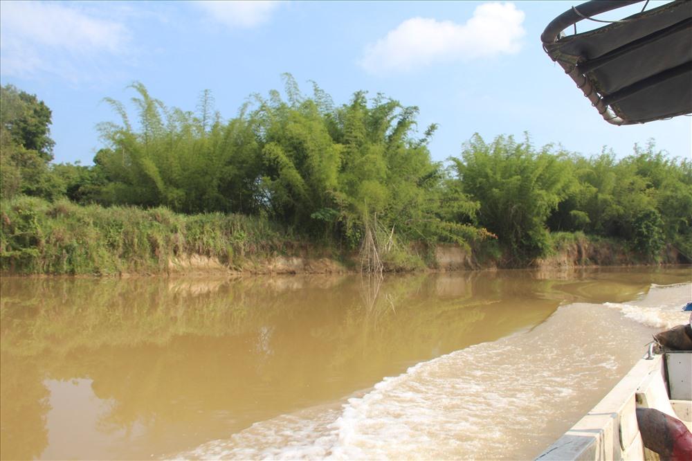 Phía bờ sông Đồng Nai thuộc Vườn quốc gia Cát Tiên cũng trở thành nạn nhân khi bờ sông bị sạt lở
