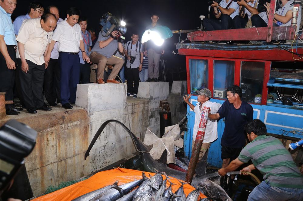 Mẻ cá thu, cá ngừ và một con cá có trọng lượng khoảng 150kg vừa được tàu cá QT93368TS đánh bắt ở vùng biển Hoàng Sa, Trường Sa. Ảnh: Hưng Thơ.