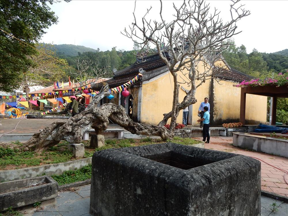 Ông Nguyễn Sự cho biết Miếu tổ nghề yến là di tích đầu tiên được trùng tu tại Hội An (1995) ảnh Thanh Hải