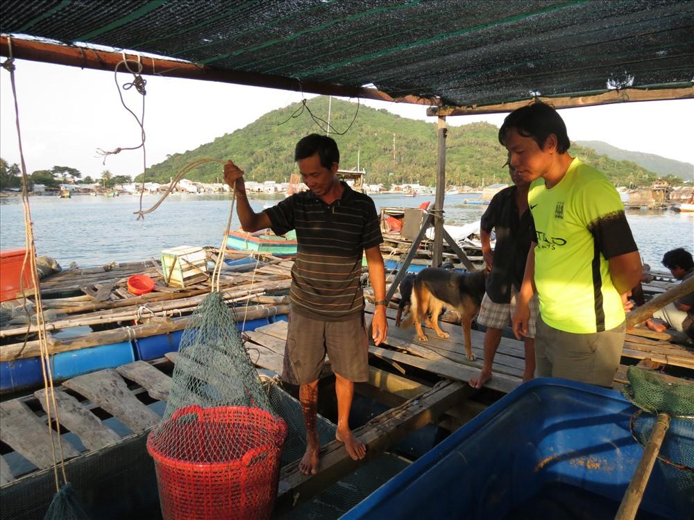 Du khách có thể đặt cá mang về, hẹn giờ ra tàu, chủ lồng bè sẽ mang đến tận nơi rồi mới lấy tiền