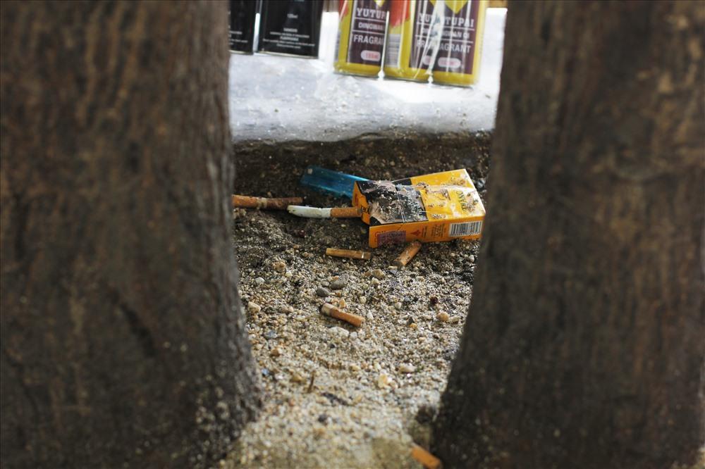 Tàn thuốc lá, vỏ bao thuốc lá vứt đầy ở các gốc cây xung quanh khu vực bến xe Mỹ Đình.