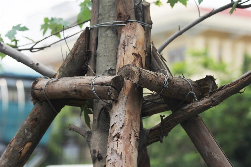 Sau một thời gian sử dụng, trụ gỗ sẽ hỏng và bắt buộc phải thay thế.