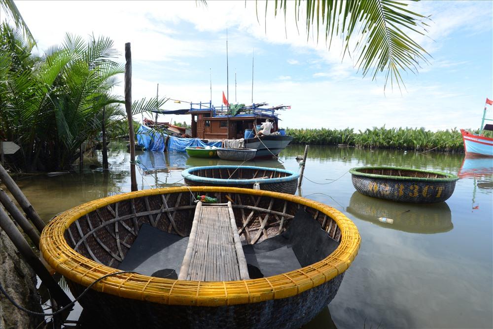 Những con thuyền đánh cá biển về neo đậu giữa rừng dừa nước Cẩm Thanh.