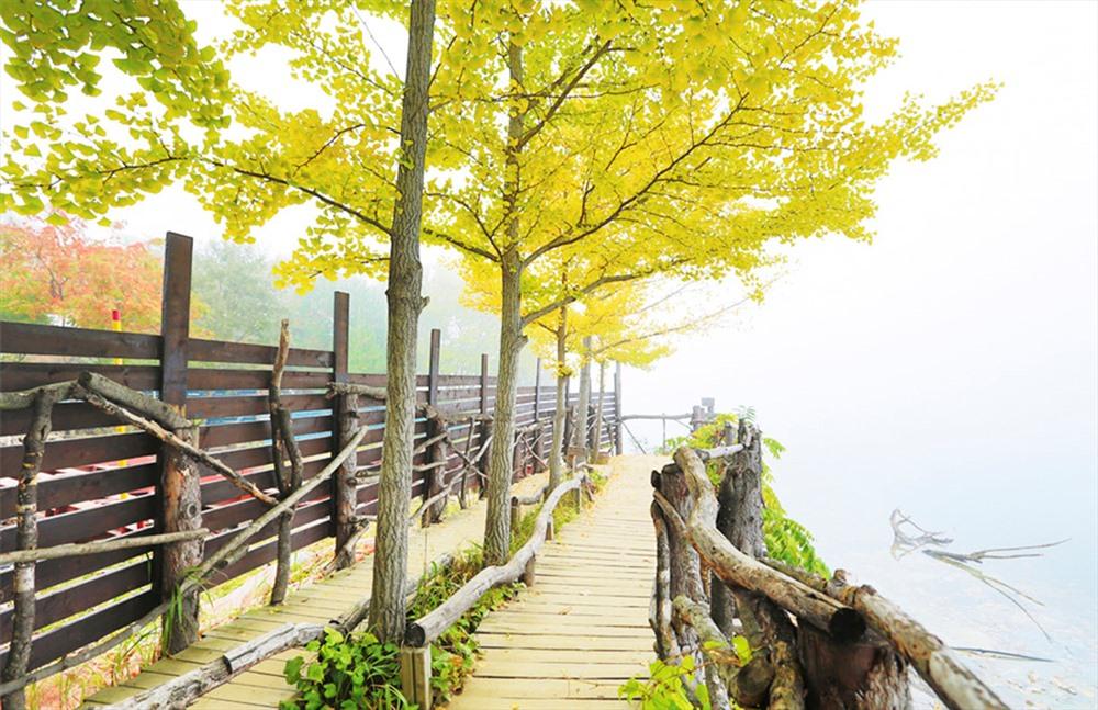 Nami là hòn đảo thân thiện với môi trường.