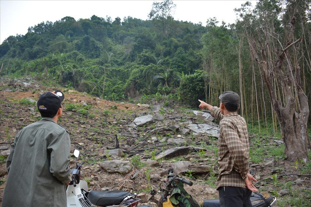 Người dân canh đàn voọc hơn 20 năm tại Quảng Nam