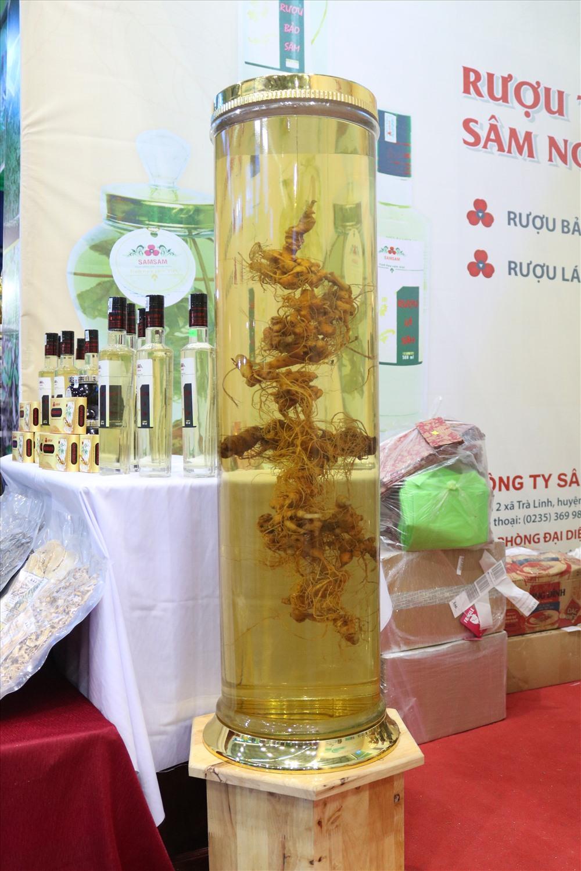 Thông qua Lễ hội, UBND huyện Nam Trà My mong muốn sẽ hình thành nét văn hóa sâm Ngọc Linh để tiến đến thành lập ngày Sâm Việt Nam. Ảnh: Đ.V