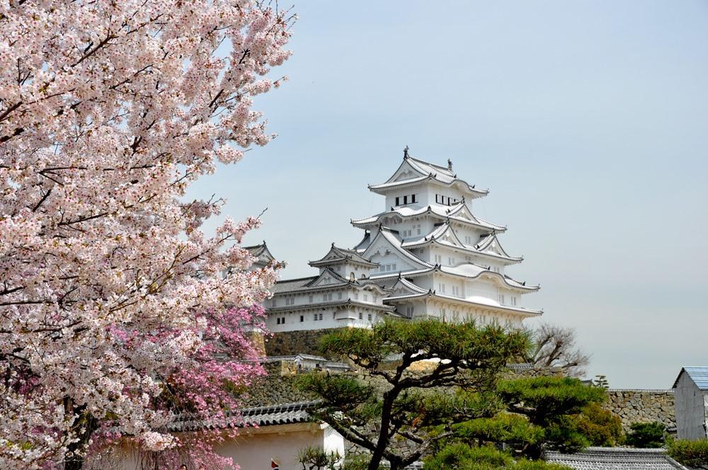 5 lâu đài đẹp nhất ở Nhật Bản - ảnh 6