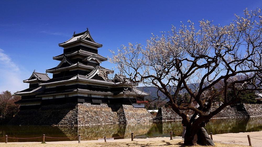 Lâu đài Matsumoto - Ảnh: Internet