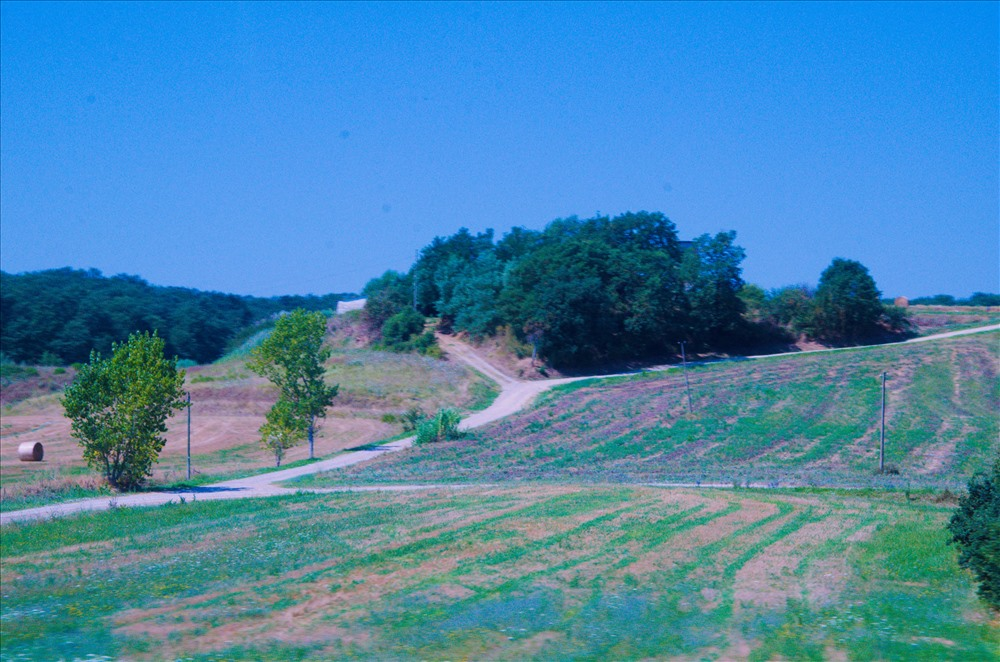 Những thảo nguyên xanh mướt dọc đường đi. Ảnh: Trần Ánh Dương