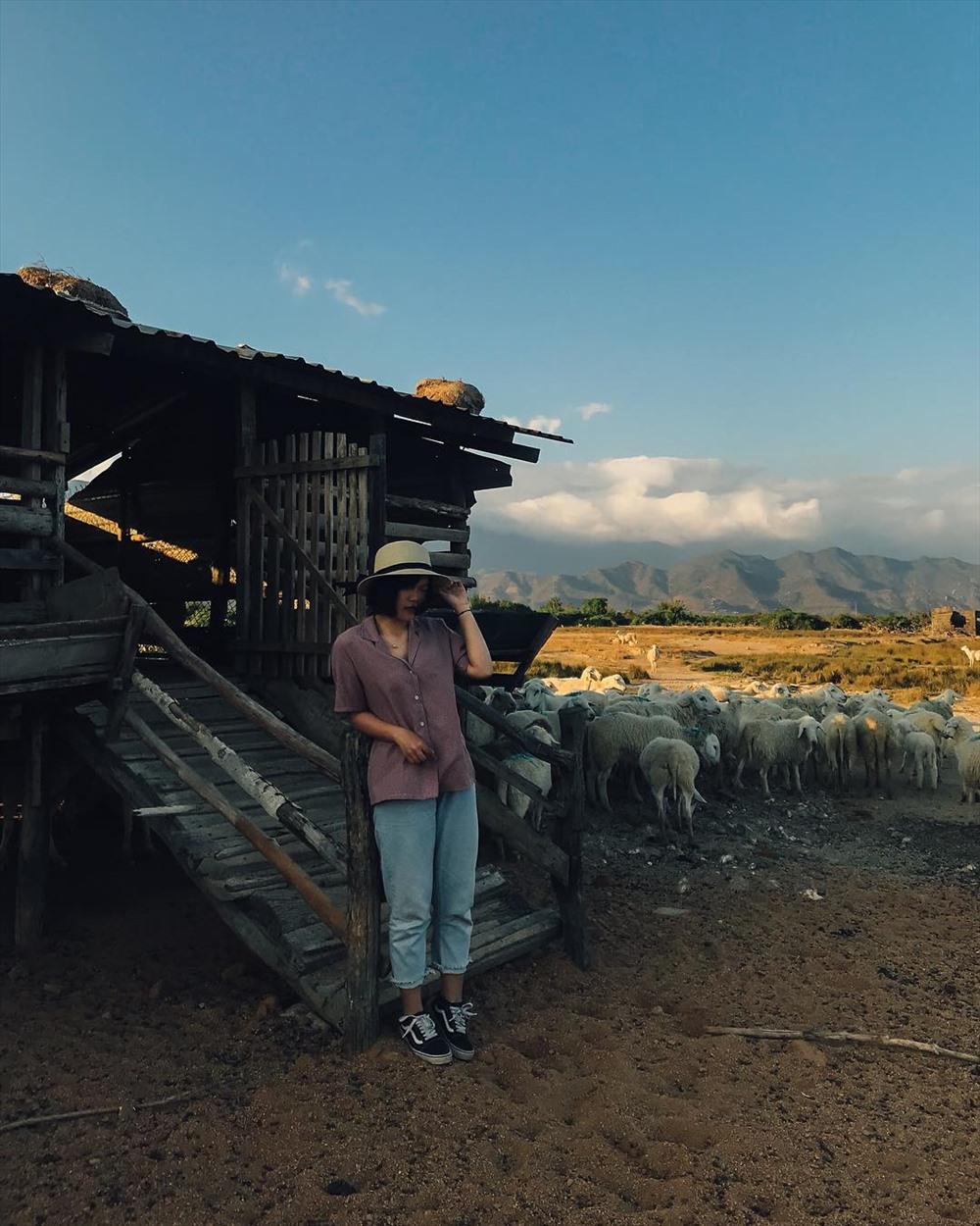 Chuồng cừu được xây cất cao để giữ cho chúng luôn khô ráo.Ảnh: instagram