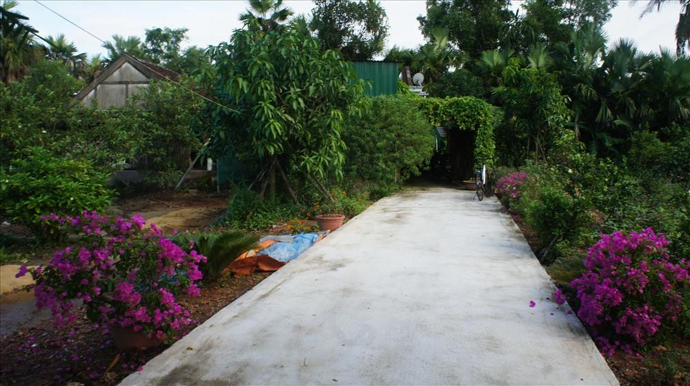 Ngôi nhà và vườn cây nhiều hoa trái được cụ Đang và người con trai chăm sóc hàng ngày