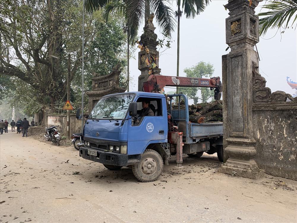 Gỗ cây sưa nhỏ hơn được vận chuyển ra khỏi chùa thôn để chuyển sang nơi tập kết, kiểm đếm.