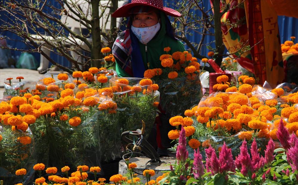 Trên bờ, người dân đã bắt đầu đến chọn hoa, cây cảnh về chưng Tết.