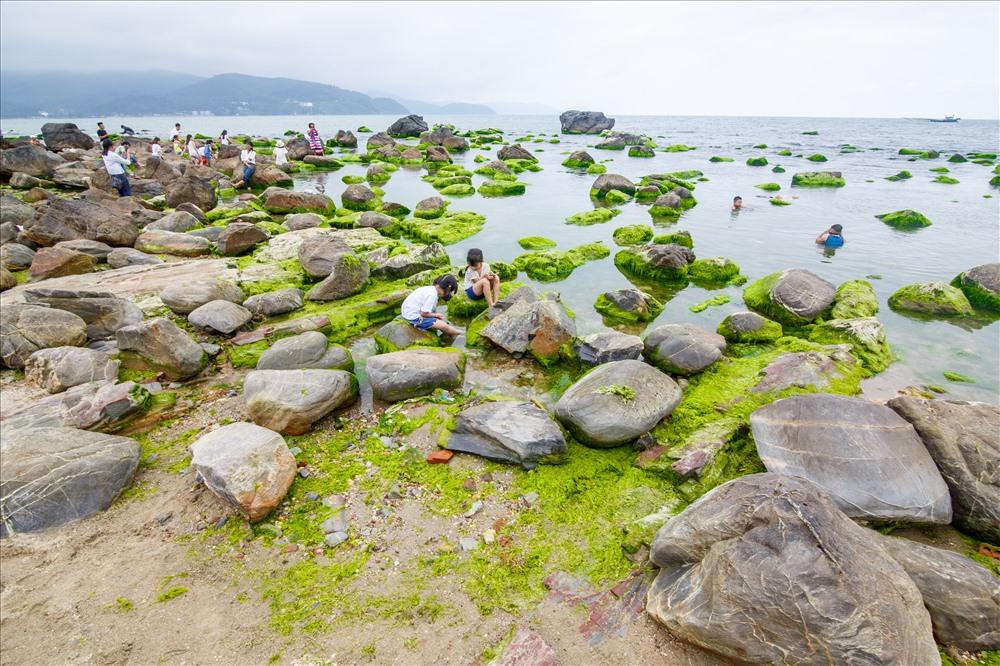 Những tảng đá được bao phủ bởi một lớp rêu xanh rờn.