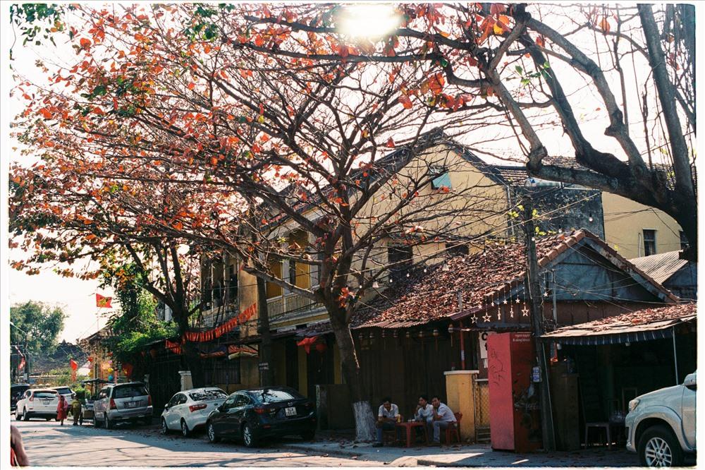 Những quán cà phê lặng lẽ bên con đường đầy lá rụng lả tả. Ảnh: L.V