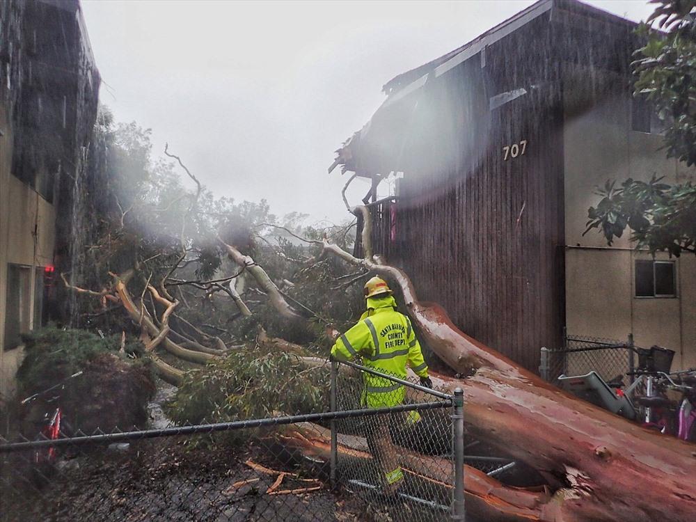 Cơn bão di chuyển qua quận Santa Barbara với vận tốc lên tới 128 km/h trong lúc di chuyển xuống phía nam, trút xuống khu vực này lượng mưa 127 mm chỉ trong 5 phút. Cây cối gãy đổ, đường dây điện ngổn ngang khắp nơi.