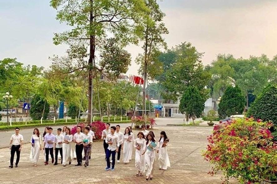 Sinh viên Trường ĐH Lâm nghiệp.
