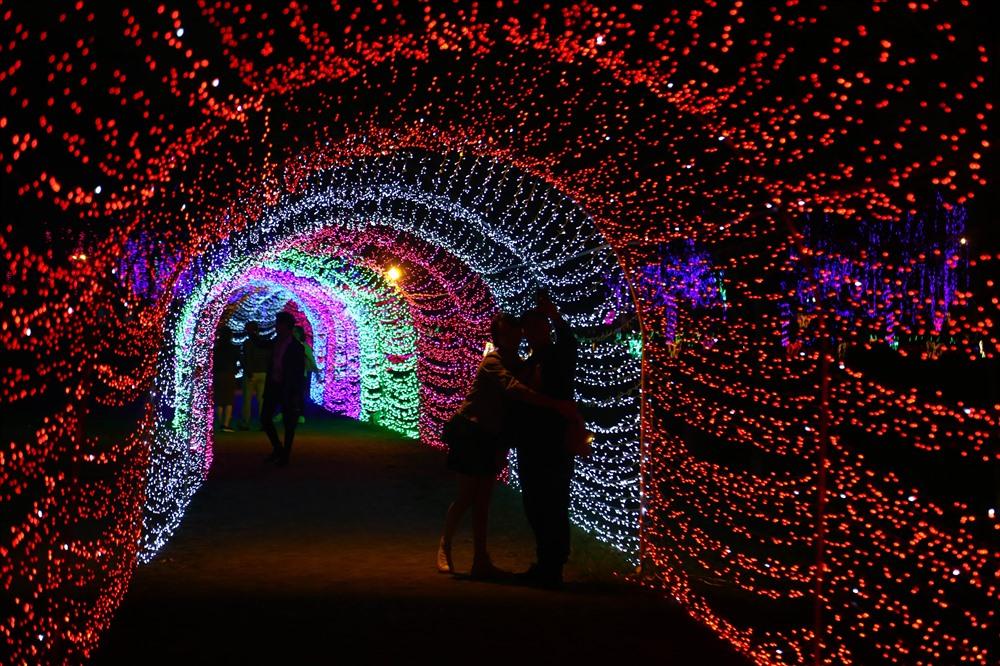Đi bất cứ đâu trong công viên, những ánh đèn lung linh cũng đều tỏa sang theo từng bước chân của du khách, tạo nên một không gian vô cùng lộng lẫy.