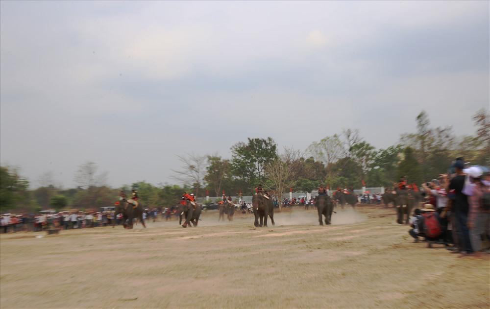 Cuộc đua bắt đầu, những chú voi đầu tiên bức tốc về đích. Mỗi nài voi một chiến thuật để giành vị trí cáo nhất nhưng ai cũng nài voi bình tĩnh điều khiển voi chạy đúng hướng.