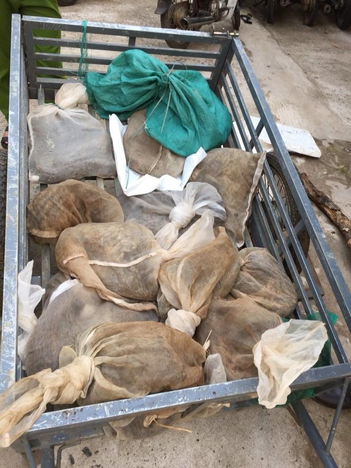 Các cá thể động vật hoang dã bỏ trên xe kéo để vận chuyển đi tiêu thụ. Ảnh: SM.