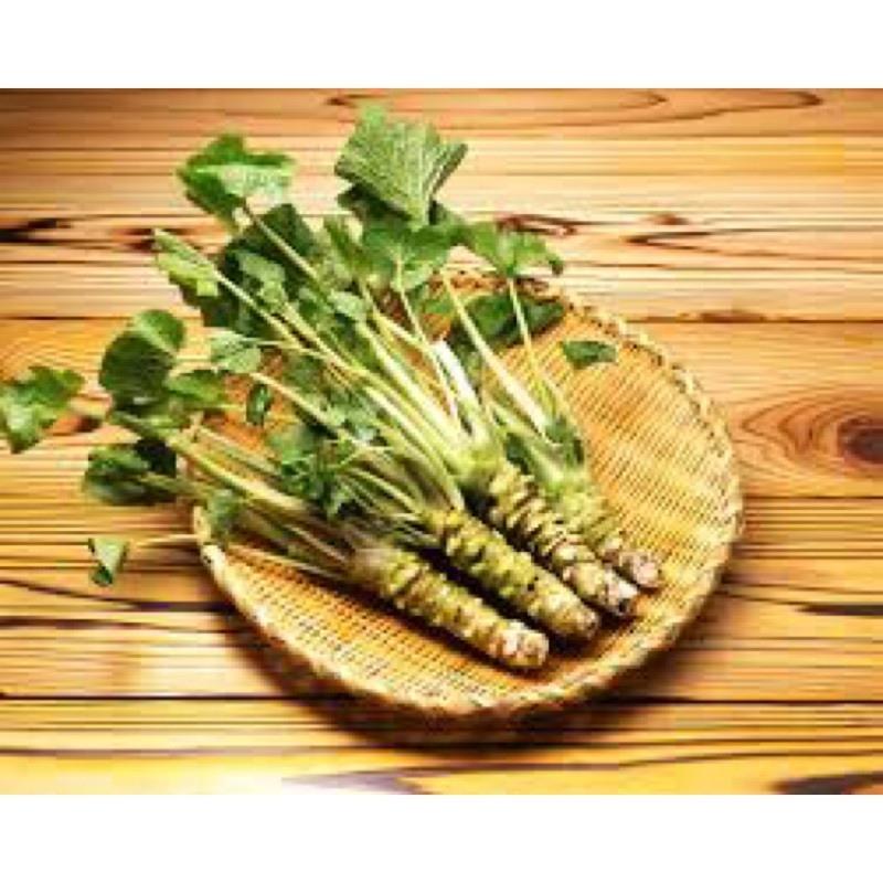 Rễ của Wasabi được bán với giá 300 tệ nửa cân