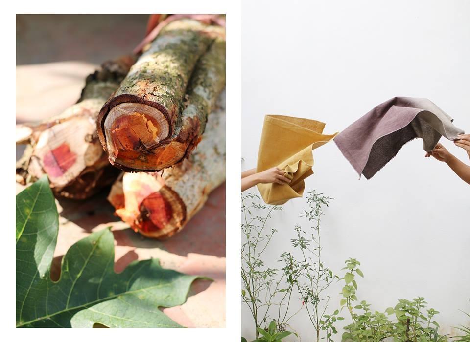 Qúa trình nhuộm vải tự nhiên trải qua nhiều công đoạn và tương đối mất sức. Để không bị phụ thuộc nguyên liệu nhuộm của đồng bào vùng cao, bạn trẻ Bùi Bảo Trang cho biết đang tự trồng các loại nguyên liệu thực vật tại Lạng Sơn.