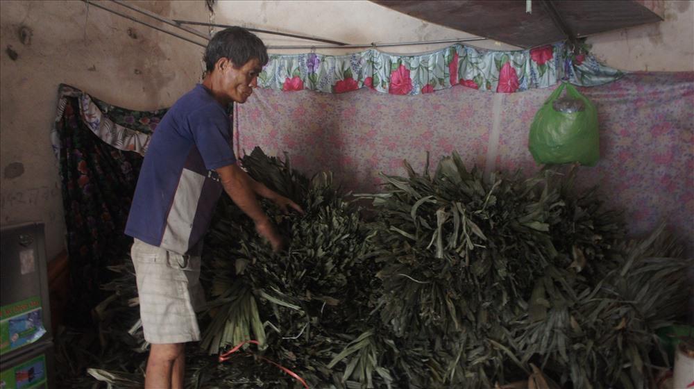 Để làm được áo tơi người dân phải lên rừng lấy lá, sau đó về đem phơi