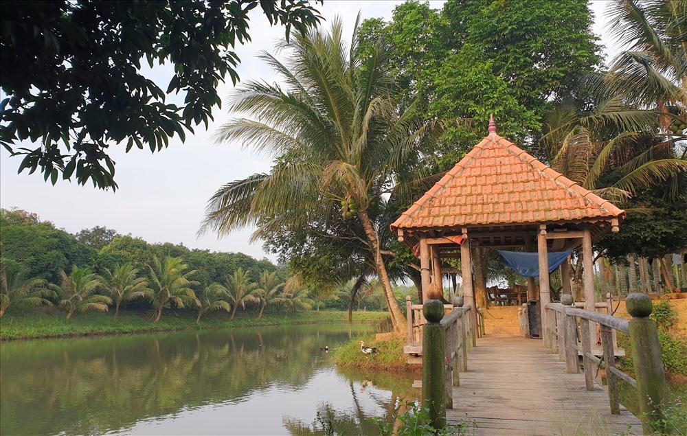 Một góc trang trại của ông Thái - Giám đốc Cty Đường 9. Ảnh: Hưng Thơ.