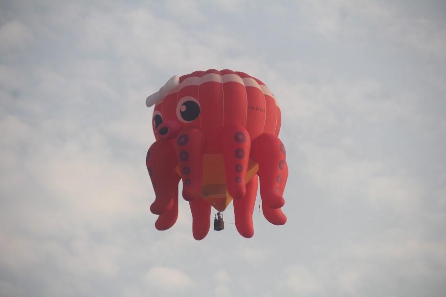 Khinh khí cầu bay lên bầu trời.