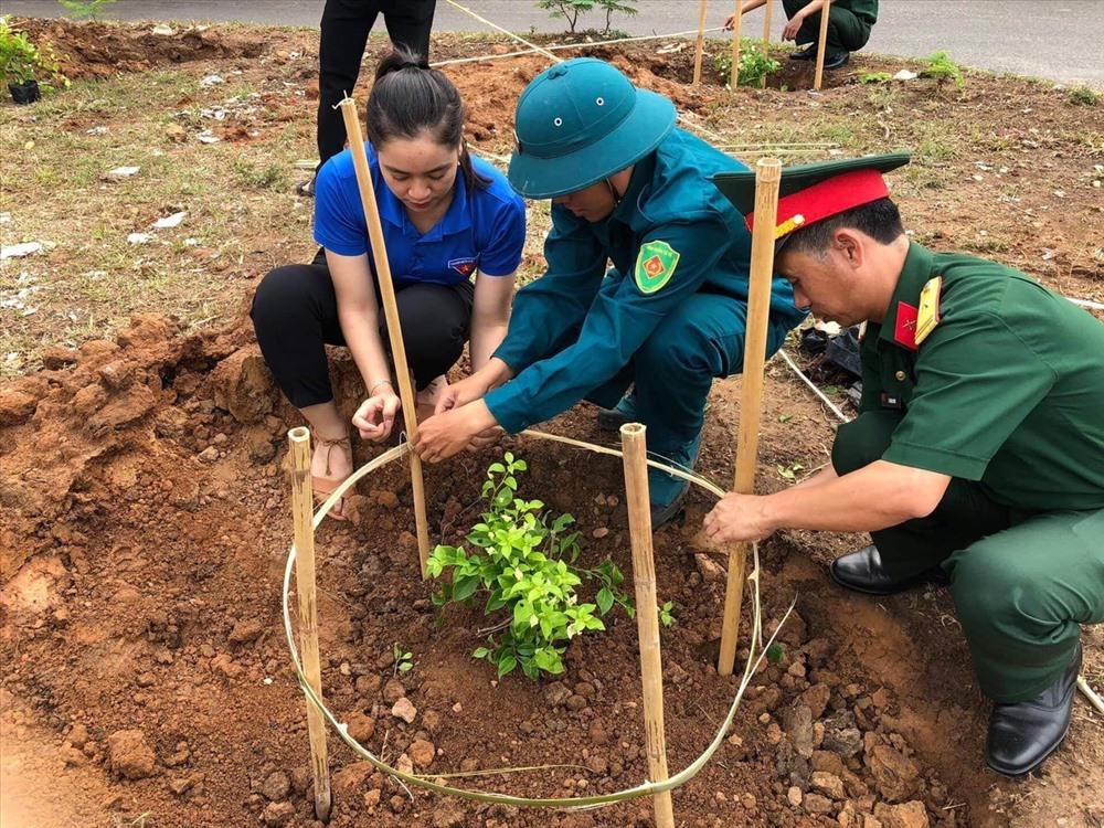 Các cơ quan, đơn vị hưởng ứng phong trào trồng hoa giấy với mong muốn biến Lao Bảo trở thành đô thị hoa giấy. Ảnh: N.K