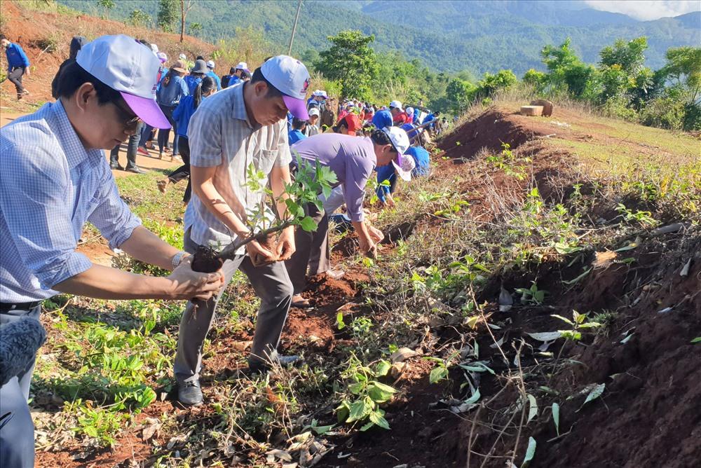 Ông Mai Huy Phương (bìa phải ảnh) - Phó Giám đốc Sở GDĐT tỉnh cùng các đại biểu trồng hoa dã quỳ. Ảnh: Hưng Thơ.