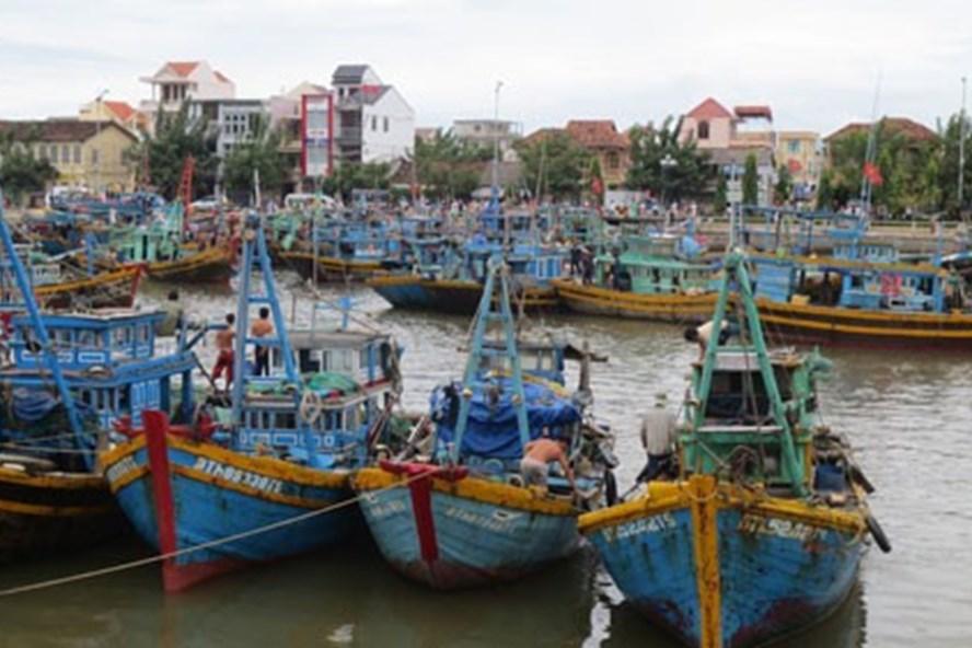 Bình Thuận cũng đã cấm tàu thuyền hoạt động đề phòng bão số 12
