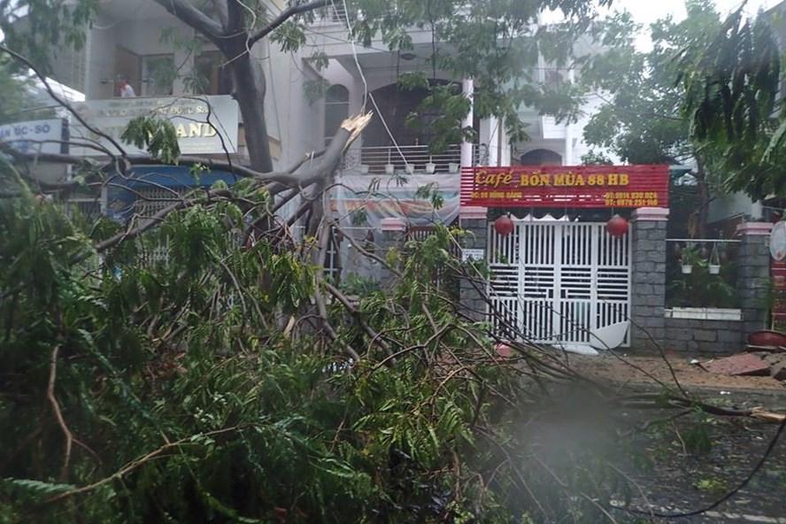 Thiệt hại do bão số 12 tại các tỉnh Nam Trung Bộ là vô cùng lớn. Ảnh: Thanh Thúy-Nhiệt Băng
