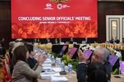 Tuần lễ Cấp cao APEC 2017 chính thức khai mạc