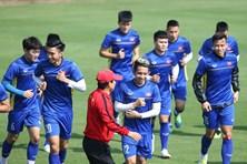 ĐT Việt Nam được hỗ trợ mở đường bay thẳng đến Bacolod đá trận bán kết AFF Cup 2018