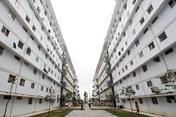 Hiệp hội Bất động sản TPHCM đề xuất: Nên miễn thuế với nhà dưới 1 tỉ đồng