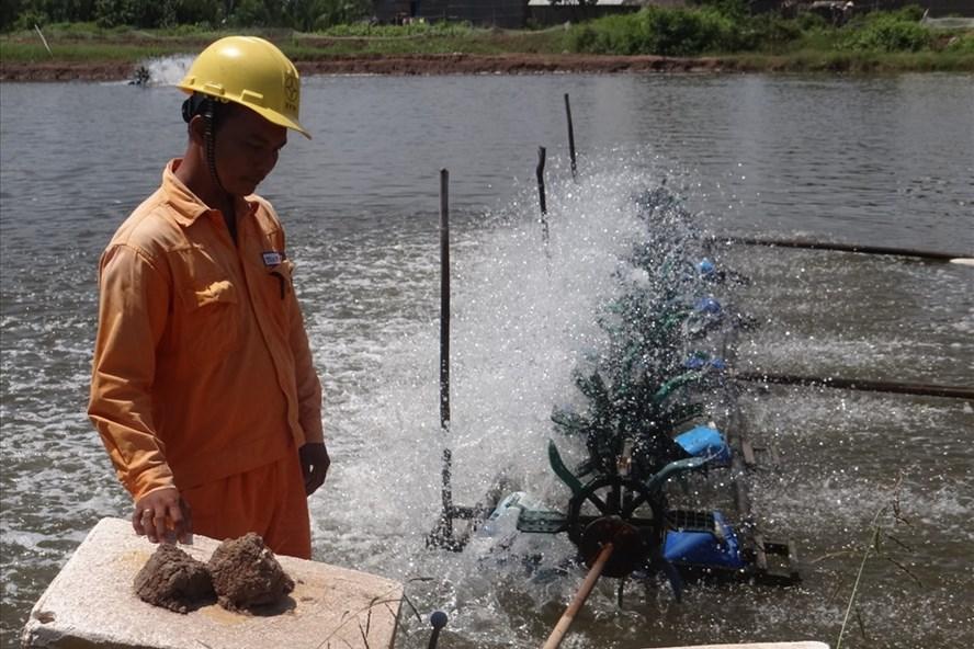 Nhu cầu điện phục vụ nuôi trồng thủy sản tăng lên qua các năm