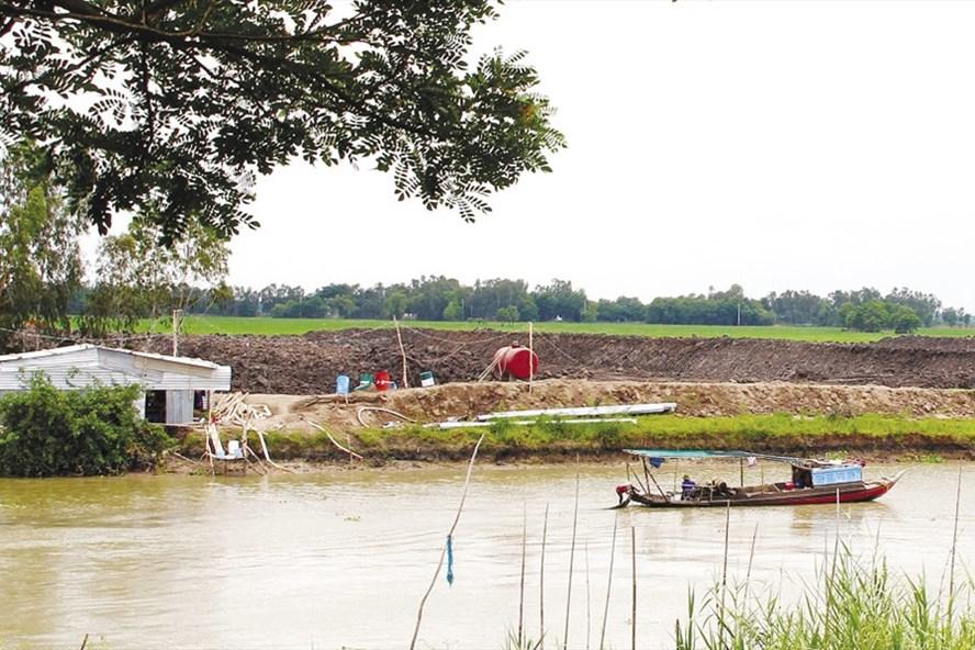 Đào ao nuôi cá tra trên đất ruộng ở Đồng Tháp. Ảnh: PV