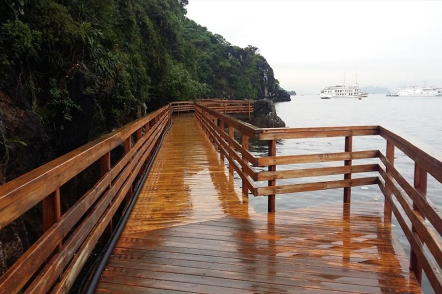 Toàn bộ hệ thống đường quanh đảo bằng xi măng đã được thay thế bằng gỗ thân thiện với môi trường. Ảnh: Nguyễn Hùng