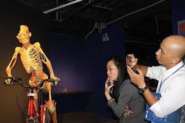 Triển lãm cơ thể người nhựa hóa. Ảnh: Báo P.L