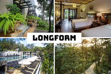 Longform: Một sáng ta về ngây ngất nhớ…