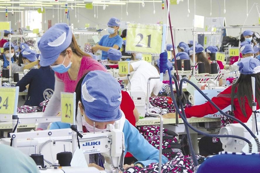 Nhiều doanh nghiệp tìm cách sa thải lao động nữ ngoài 40 tuổi vì không đáp ứng được yêu cầu công việc và sự thay đổi khoa học công nghệ. Ảnh minh họa: T.L