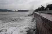 Những hình ảnh thành phố Hải Phòng bình lặng trước bão số 4