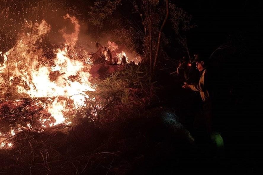Điểm phát lửa là khu thực bì của một đồi keo đã khai thác chưa dọn dẹp...