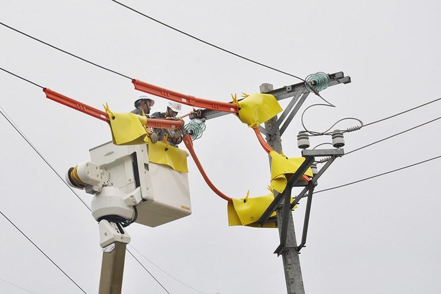 EVN HANOI chủ động tiến hành duy tu bảo dưỡng và sửa chữa kịp thời thiết bị điện trước mùa mưa bão. Ảnh: Huyền Trang