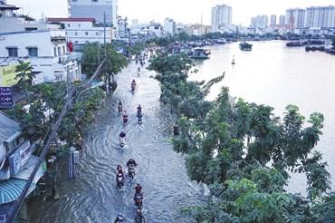 Nước triều lên cao tràn từ Kênh Tẻ qua đường Trần Xuân Soạn (Q.7) làm ảnh hưởng đến giao thông và đời sống người dân. Ảnh: M.Q