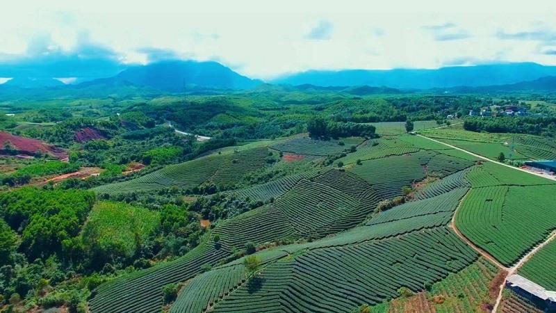 Thung lũng Đường Hoa nhìn từ không ảnh