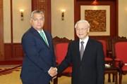 Tầm cao mới trong quan hệ Việt Nam - Hungary