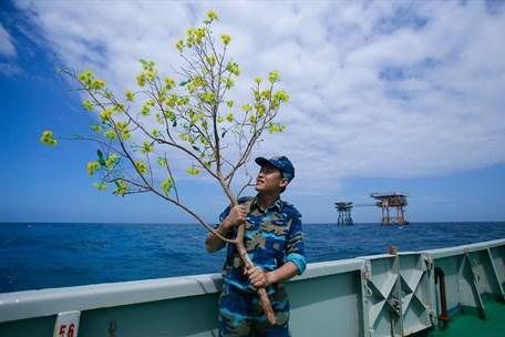 Chở mùa Xuân cho những người lính ngoài biển xa
